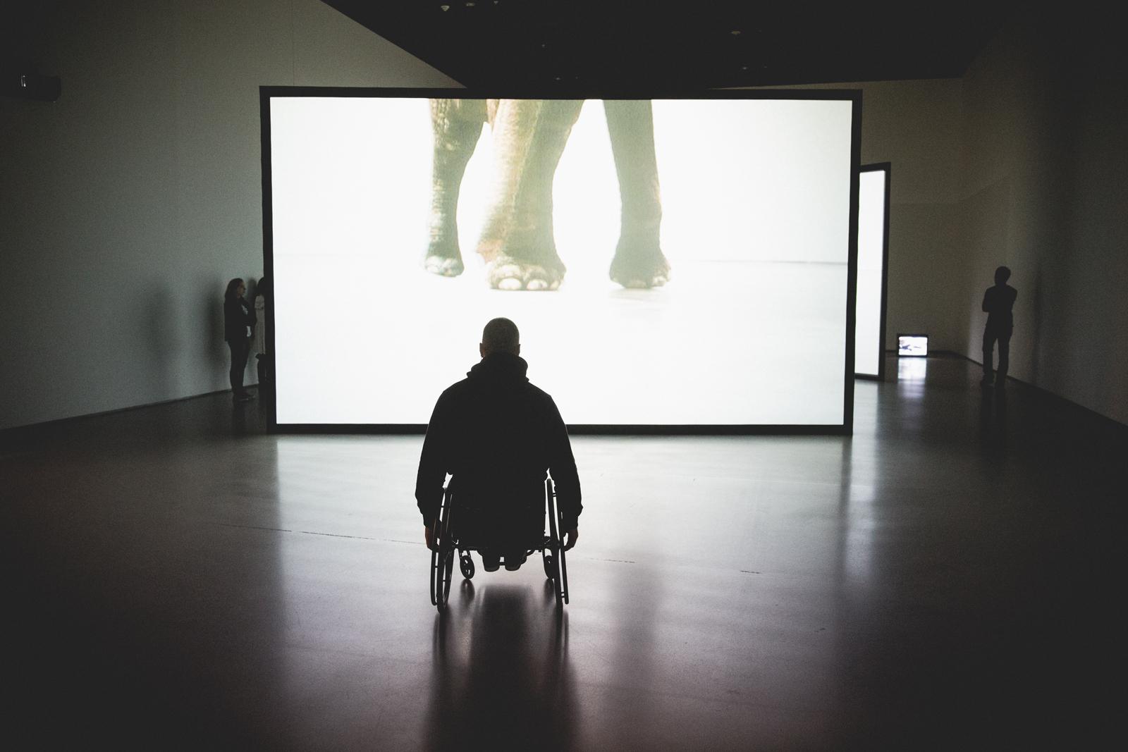 bolfo_0001s_0018_NYHC MOMA