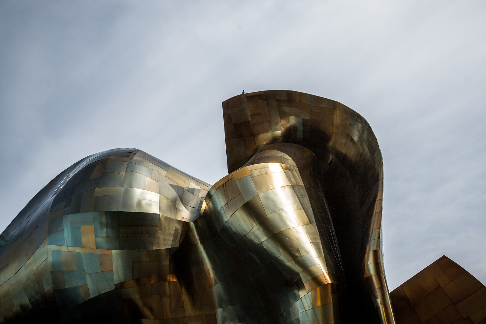 bolfo_0011s_0007_EMP Museum Seattle