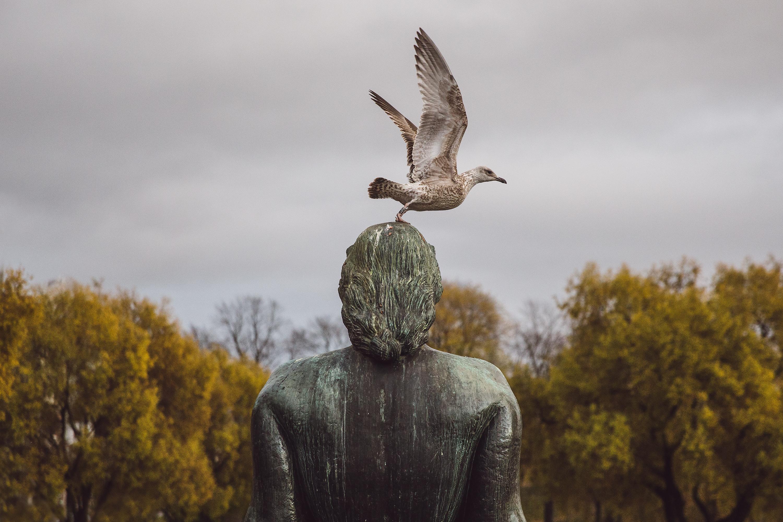 Bird One